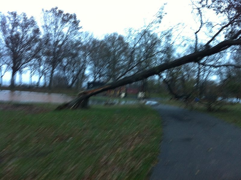 After Hurricane Sandy-Wolfes Pond Park