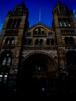 Natural History Museum, Londyn