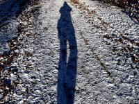 the shadow who knows me better
