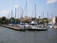 marina safety harbor florida usa