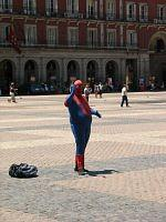 fat spiderman in madrid